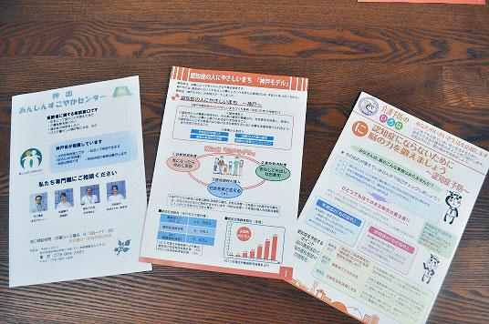 「神戸モデル」案内冊子