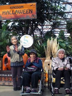 ハロウィン飾りの神戸どうぶつ王国